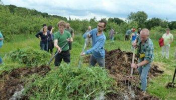 Helhedsorienteret tilgang til bæredygtighed