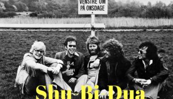 Så du DR2's ærlige dokumentar Fluer i Kødbyen om Shu-Bi-Dua i lørdags?